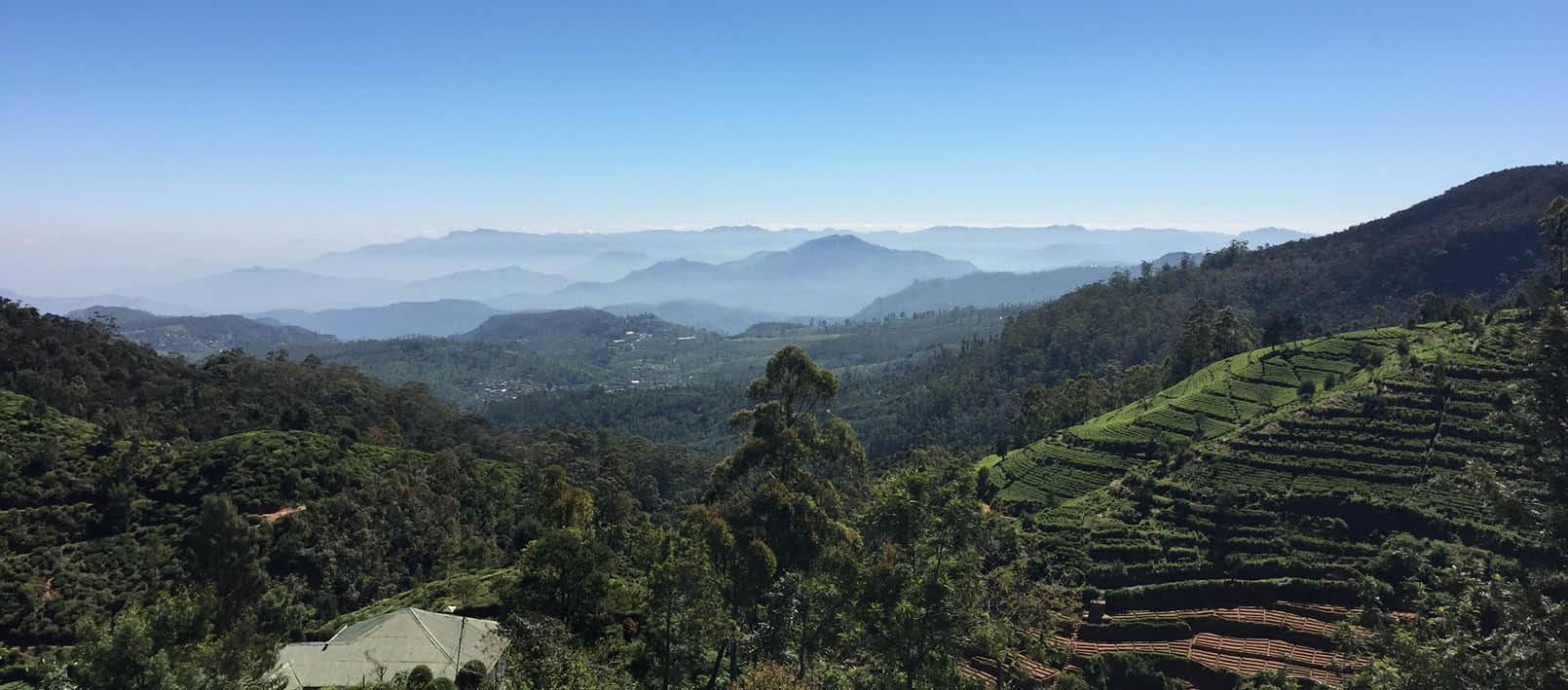 Diese einmalige Landschaft ist eines der Highlights jeder Sri-Lanka-Reise